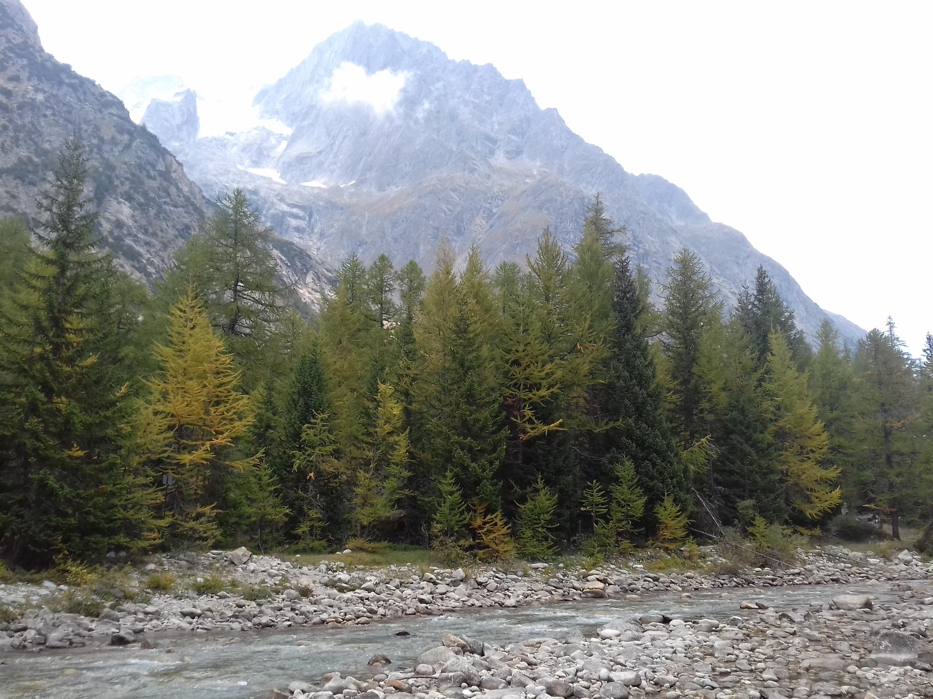 Val Ferret
